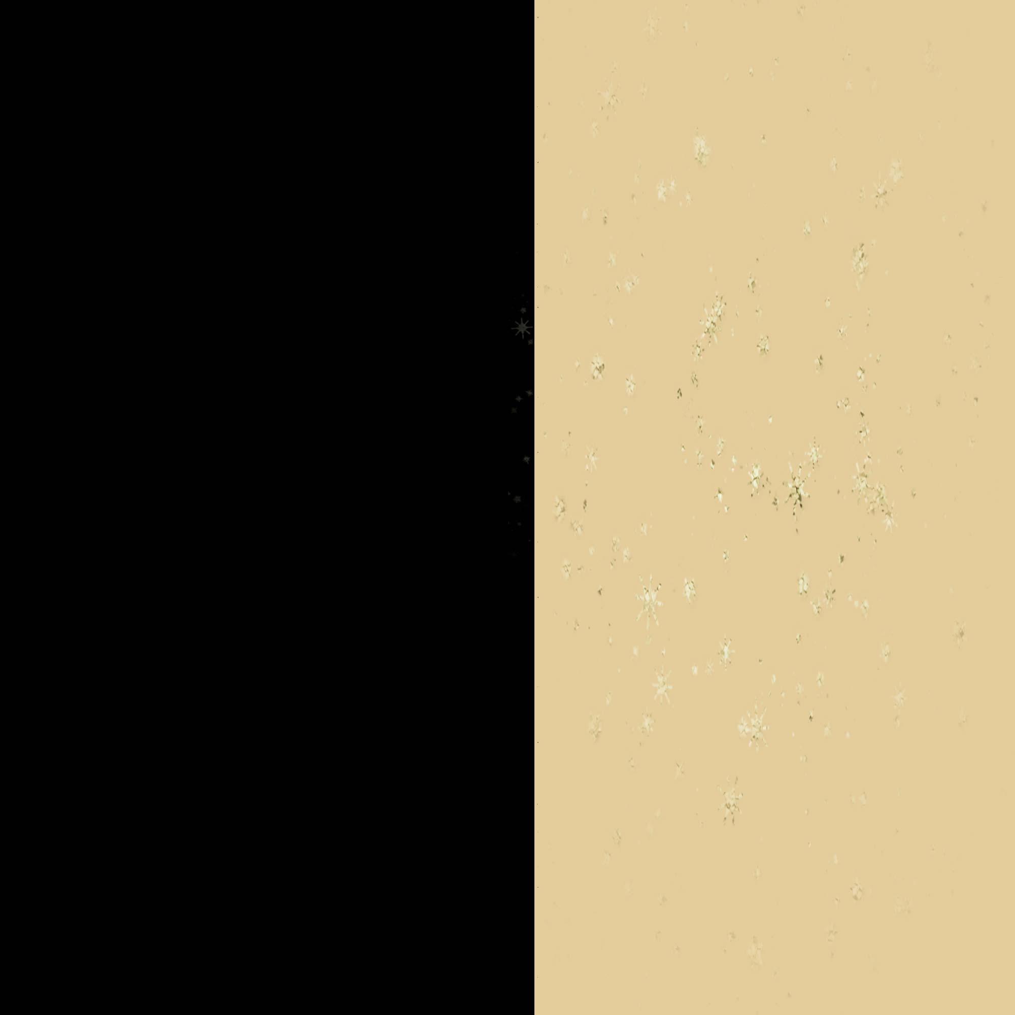 negru+auriu